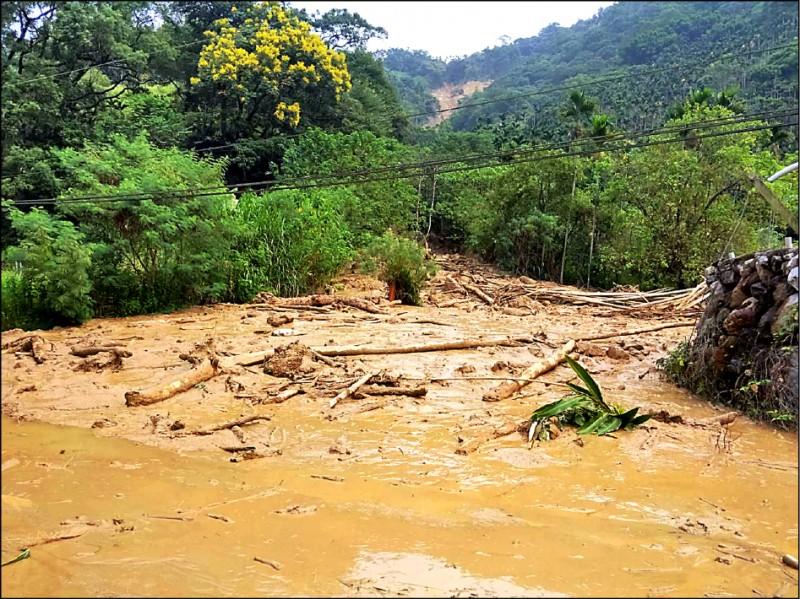 南投山區日前大雨不斷,導致水里鄉上安村山坡發生崩坍,造成土石流影響道路交通。(記者劉濱銓翻攝)