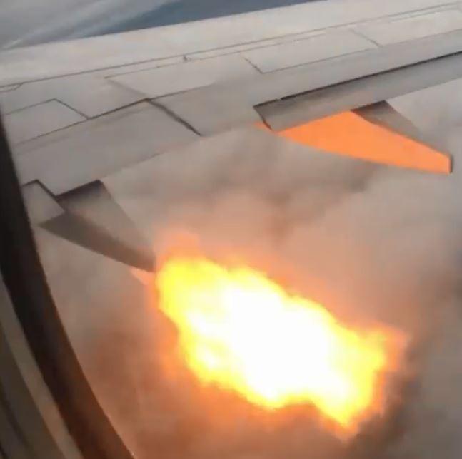 加拿大Swoop客機驚傳有小鳥遭吸進引擎,導致起火冒煙。(圖擷自rodriguez_revolution Instagram)