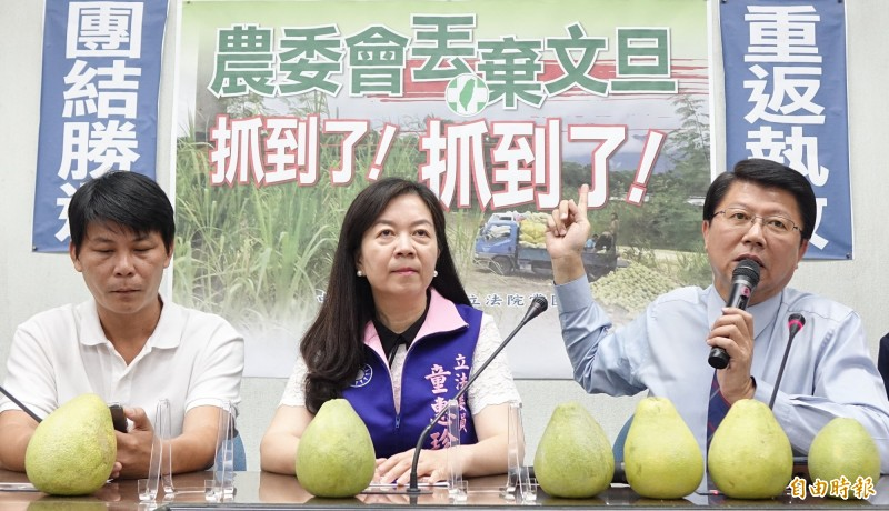 國民黨近期稱農委會丟棄文旦,被王定宇打臉。(資料照)