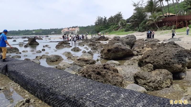 富山保育區最吸引人的就是踏進潮間帶餵魚,但基於生態考量,保育區將規定禁踏潮帶,限走賞魚步道。(記者黃明堂攝)