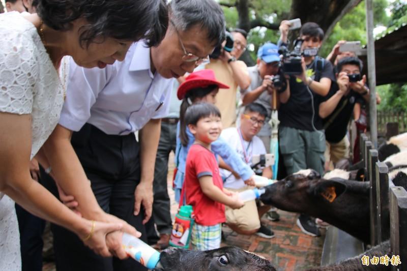 柯文哲體驗牧場餵牛,動作生疏,被一旁的妻子陳佩琪大開玩笑。(記者鄭名翔攝)