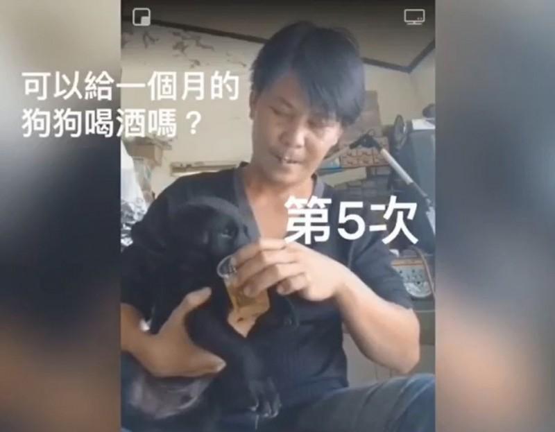 韓家軍林佳新被爆餵幼犬喝酒,台灣動物緊急救援小組籲勿做錯誤示範。(圖由台灣動物緊急救援小組提供)