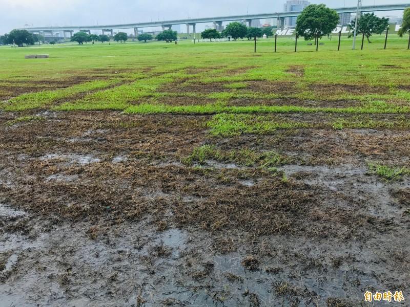 草地遭破壞較嚴重的主舞台範圍,必須翻鬆土讓後新植草皮,但國民黨新北黨部並未於期限內新植。(記者陳心瑜攝)