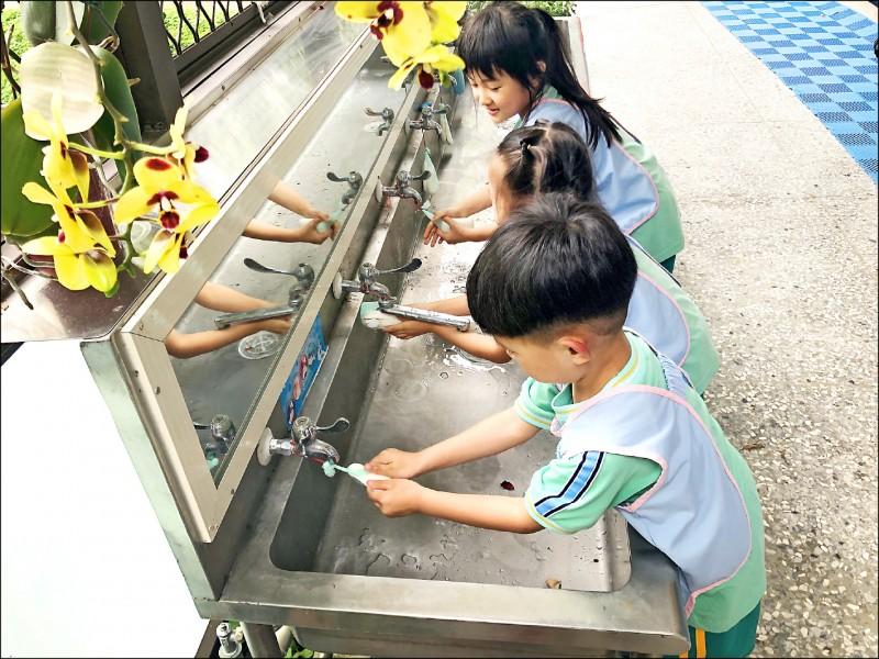 腸病毒傳染力強,勤洗手是預防腸病毒最有效的方法。 (資料照,記者蔡淑媛翻攝)
