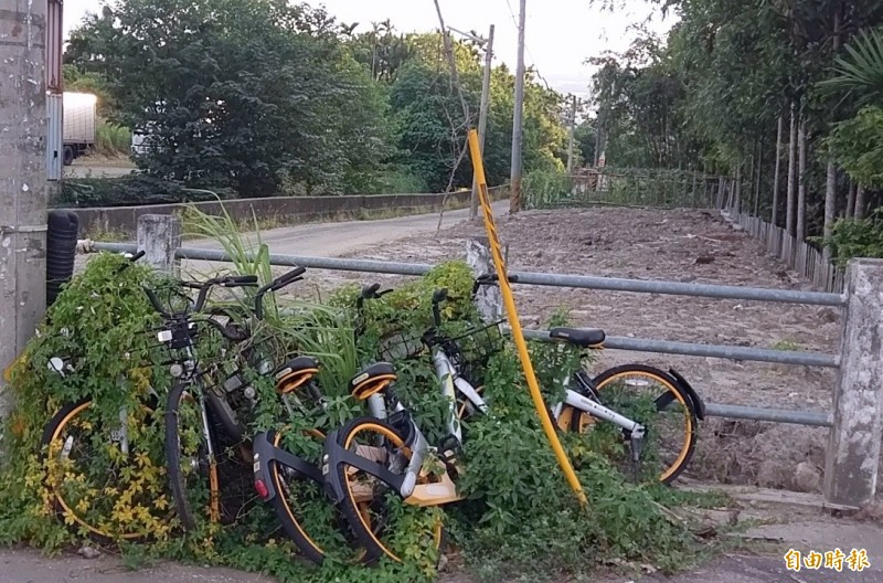 oBike隨地借變隨地丟 南投赫見「腳踏車墳場」!