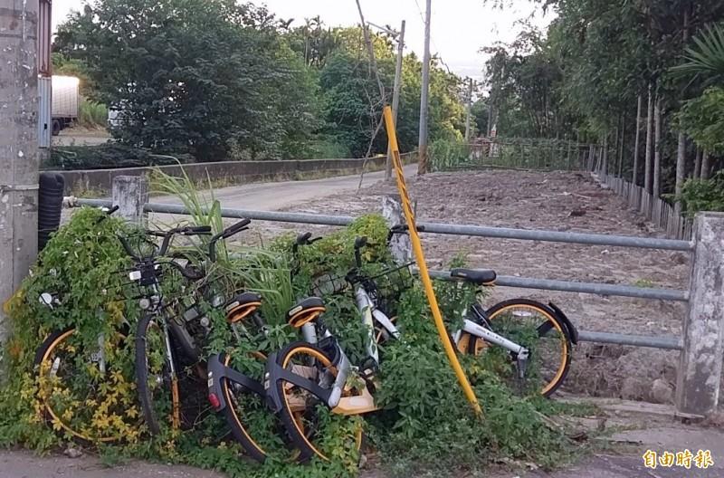 脚踏車變廢鐵影響市容 南投公所下改善通牒