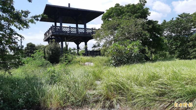 台東水利公園只見涼亭,不見小徑。(記者黃明堂攝)