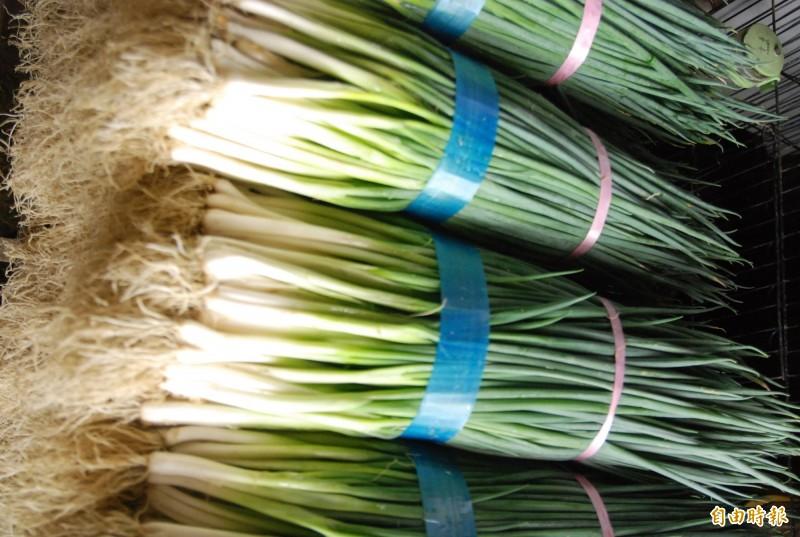 青蔥價居高不下,日本蔥進口平抑價格,圖為本土青蔥。(資料照,記者顏宏駿攝)