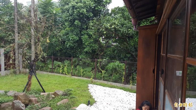 松山療養所所長宿舍有美麗的庭院。(記者楊心慧攝)
