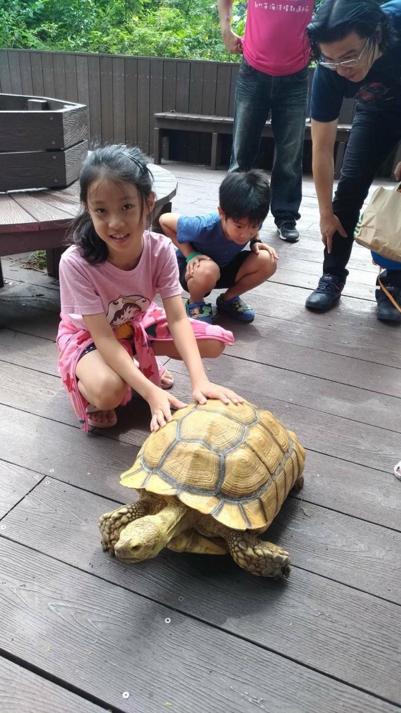 SUP立槳運動&環境教育 青草湖一日「水陸雙拼」