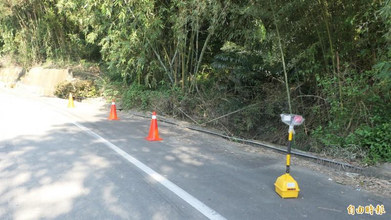 苗栗縣政府農業處擔心石虎媽媽返回找小石虎,已在發現路段設置爆閃燈,呼籲駕駛減速慢行。(記者張勳騰攝)