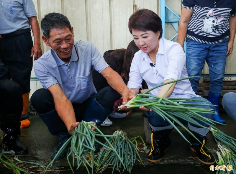 在大安青蔥產銷班第七班班長黃清木(左)帶領下,台中市長盧秀燕(右)體驗洗蔥作業。(記者張菁雅攝)