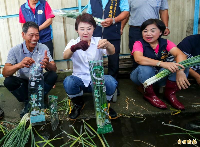 台中市長盧秀燕(中)、副市長楊瓊瓔(右)當一日蔥農,體驗洗蔥、裝蔥作業。(記者張菁雅攝)