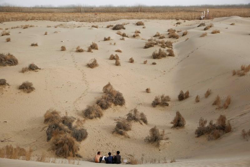 中國在1978年推動綠色長城計畫,企圖阻止北方沙漠化的步伐,儘管成功減緩沙漠擴張,但乾旱地反而增加了。(路透)