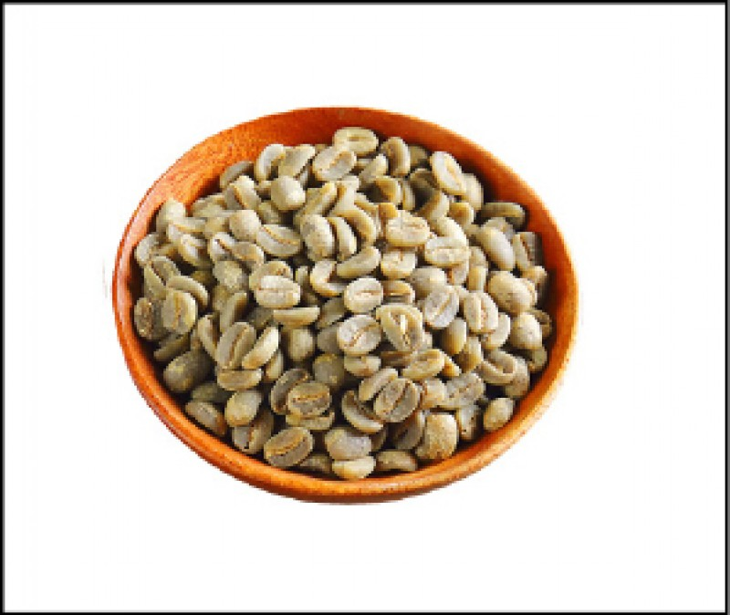國姓鄉偶會見到圓豆咖啡,圓豆咖啡因授粉異常,不同於一般咖啡豆是兩顆扁平豆合在一起生長,圓豆僅有單一顆豆子,也因此單一豆所含養分比較高,但須透過人工篩選,耗時與耗力,市面上不常見。(記者李惠洲/攝影)