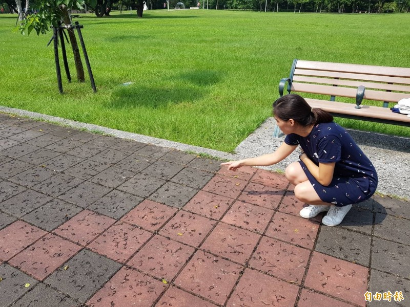 市民代表李玉萍說,步道上滿滿都是蚯蚓在爬行。(記者葉永騫攝)