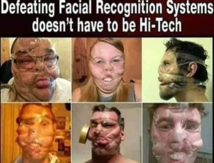 網友表示,「擊潰臉部辨識系統,無須借助高科技也能辦到」。(圖擷取自臉書_美到沒朋友)