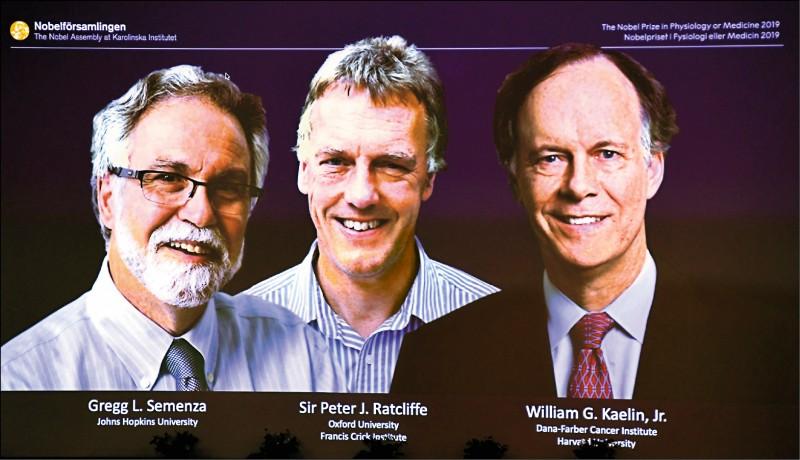 塞門薩(右圖左起)雷克里夫和凱林今年獲頒諾貝爾醫學獎的研究。 (取自網路)