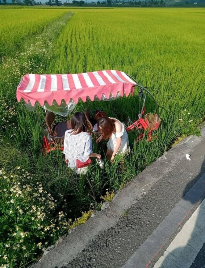 網友PO出腳踏車衝入稻田的照片。(圖擷自爆廢公社)
