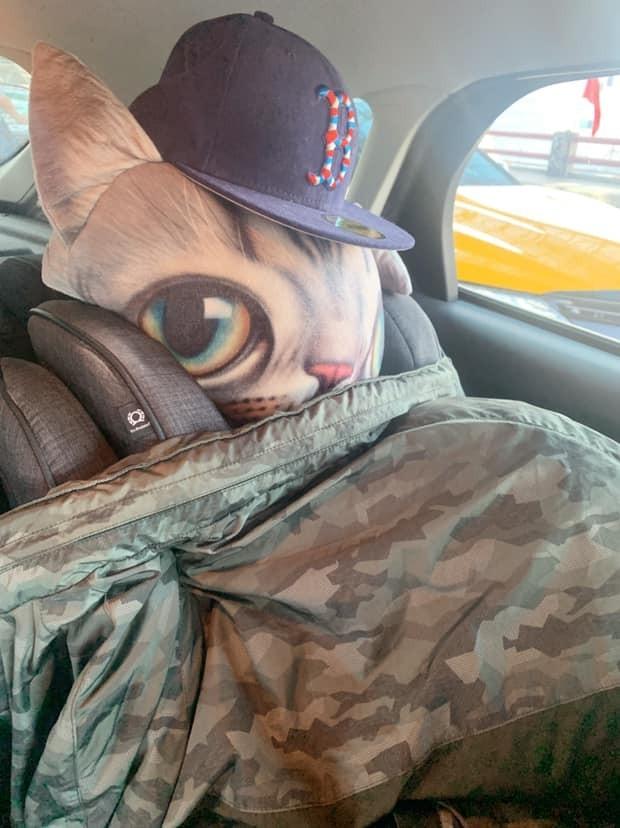 男網友要載家人去機場,發現高速公路有高乘載管制,急中生智把一個大頭貓咪的抱枕放在後座椅背上,再用迷彩外套、鴨舌帽打扮假裝後座還有一個人。(圖擷取自臉書《爆怨公社》)