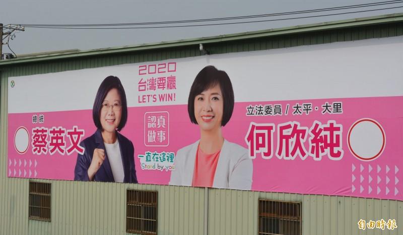 母雞帶小雞 台中第7選區街頭宣傳戰開打