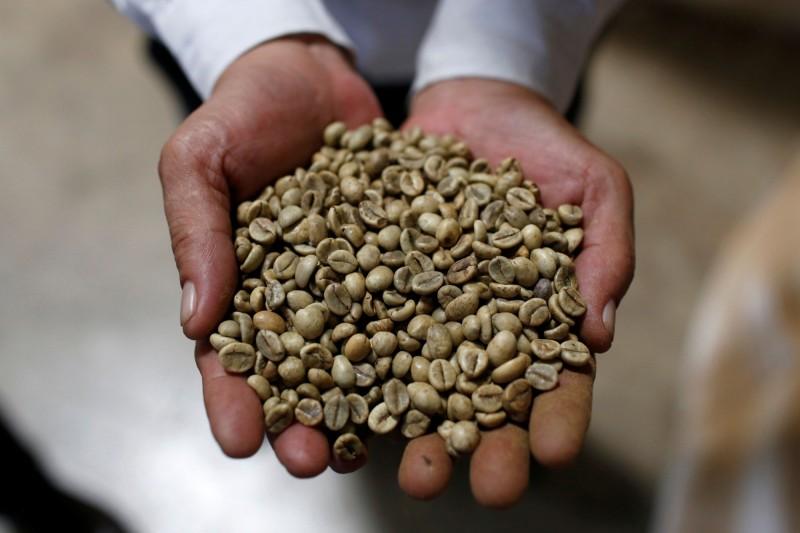 美研究︰咖啡豆殼和銀皮萃取物 可舒緩肥胖相關慢性病