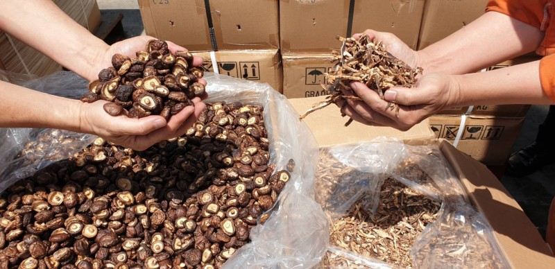 杜絕中國農產品從第三地轉運來台,香菇等11項農產品進口須附原產地證明。(資料照,記者洪定宏翻攝)