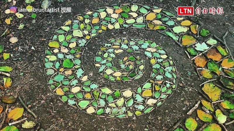 James Brunt用落葉和樹枝排出讓人讚嘆的圖案。(James Brunt授權)