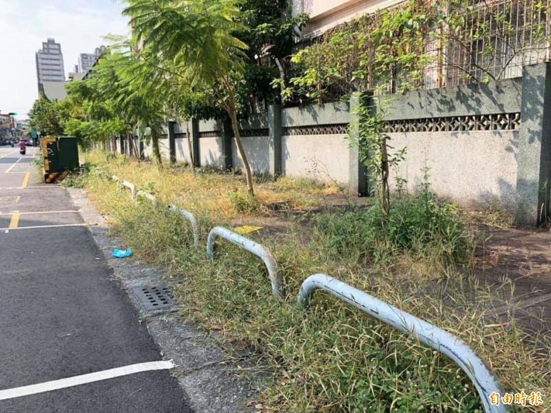 崇實高工公共空間無人管 人行道變叢林