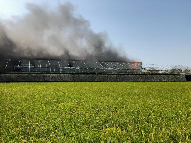 木材工廠起火,火勢驚人,一旁溫室葡萄園岌岌可危。(記者陳冠備翻攝)