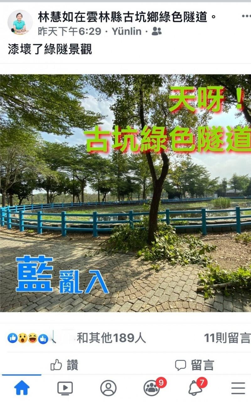 「藍」亂入! 綠色隧道生態池成話題