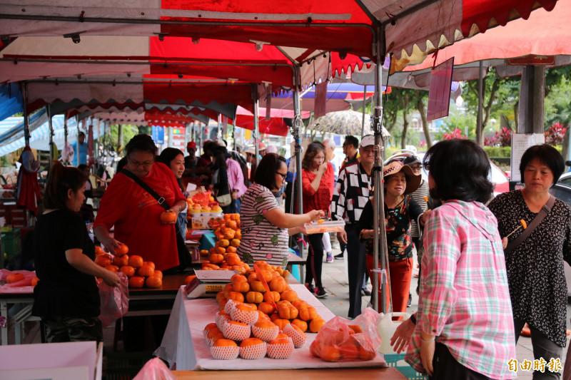 旱災暴雨接連來襲 南庄甜柿產量剩不到3成