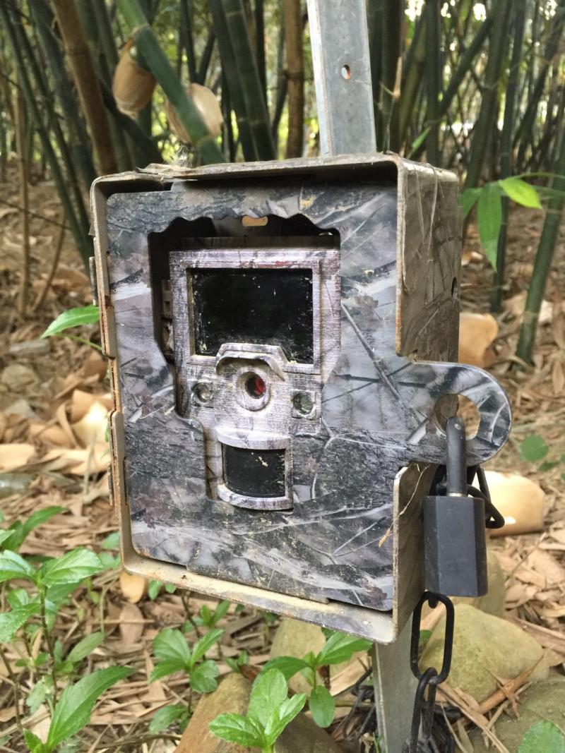 圖為紅外線自動相機。(苗栗縣政府提供)