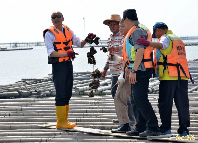 韓國瑜今天下午在東石內海採蚵,被媒體問及沒吃蚵難道是怕「ㄎㄜ」?韓國瑜說,此「蚵」非彼「柯」,一點關係都沒有。(記者許麗娟攝)