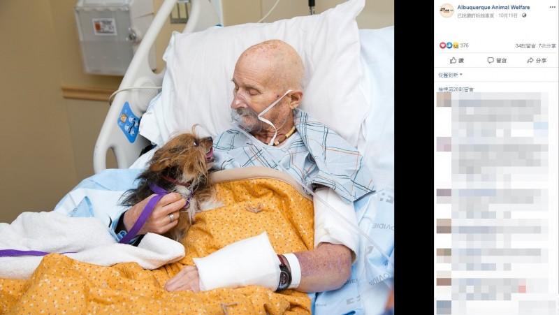 美國一名69歲退伍軍人文森上週被送往安寧中心,似自知所剩時間不多,文森提出請求希望能最後一次見到他的愛犬補釘,並在社工等人協助下,完成與補釘道別的心願。(圖翻攝自臉書粉專「Albuquerque Animal Welfare」)