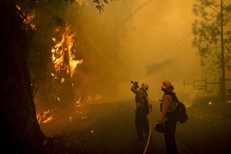 美國加州野火肆虐,估計約202.3平方公里遭吞噬,20萬名居民撤離,州長紐森27日宣布全州進入緊急狀態。(美聯社)
