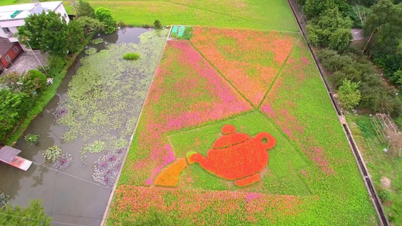 空拍玩家簡新宗在桃園花彩節大溪展區拍下的美麗花田。(圖由簡新宗提供)