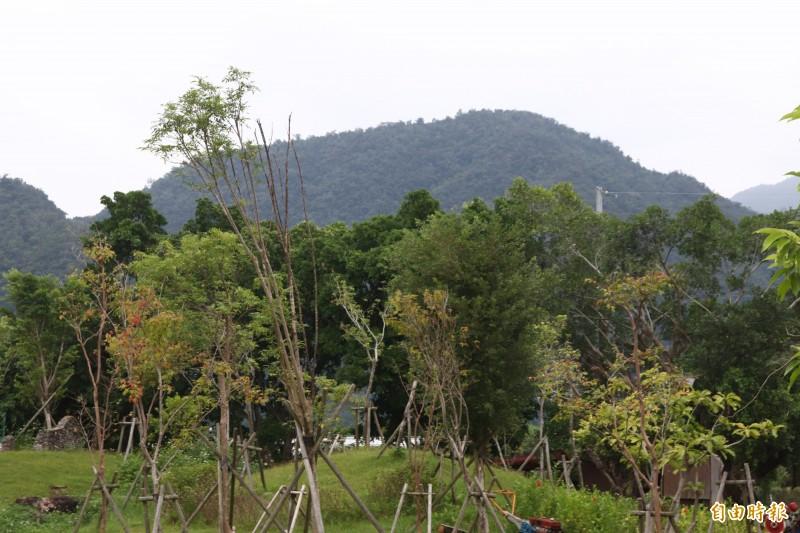 永侒實業申請於中華村的礦業開發案,最讓民眾詬病的,莫過於將一座山的海拔高度從403公尺,挖到只剩210公尺;圖為開發案預定要開採的山丘。(記者林敬倫攝)