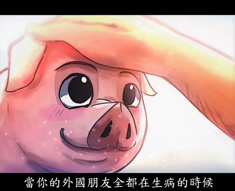海洋委員會在臉書發文暖心關懷「台灣豬」,加強宣導防疫工作。(圖擷取自海洋委員會臉書)