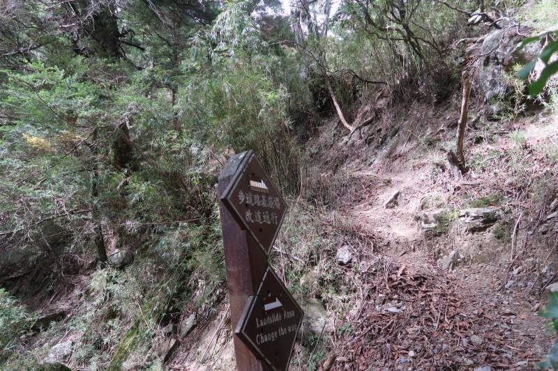 玉管處近日進行玉山下八通關路線踏勘,在荖濃斷崖部分,因屬崩塌地形,建議山友應循高繞路線行走。(玉管處提供)