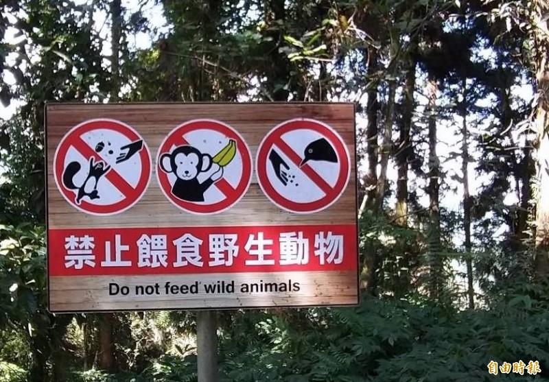 南投縣溪頭自然教育園區廣設告示牌,提醒遊客不要餵食獼猴等野生動物。(記者謝介裕攝)