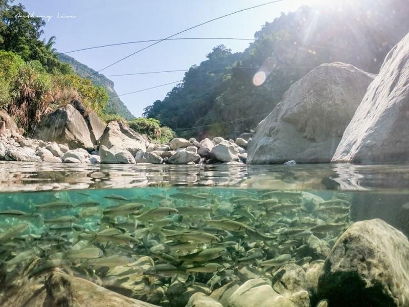 達娜伊谷鯝魚水中游美景與秀麗的山谷景致,讓人忘掉煩惱。(劉博文攝影提供)