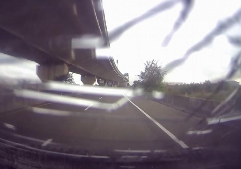 狗狗墜落15公尺橋下,撞擊轎車車頂造成擋風玻璃碎裂。(民眾提供)