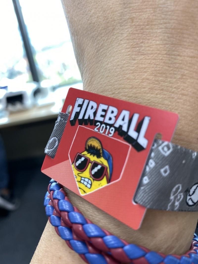 11月23、24日在桃園棒球場舉行的「火球祭」,以特製悠遊卡手環作為入場憑證。(悠遊卡公司提供)