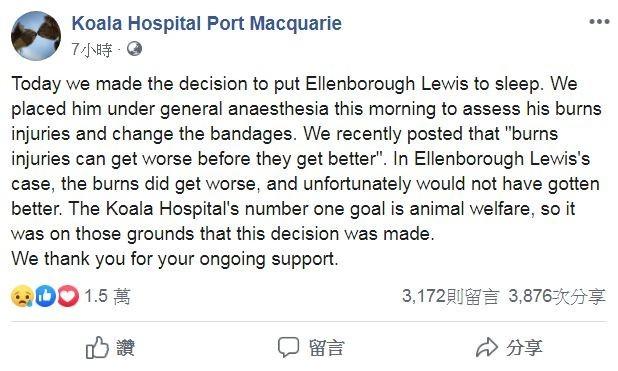 院方聲明全文。(圖擷取自臉書_Koala Hospital Port Macquarie)