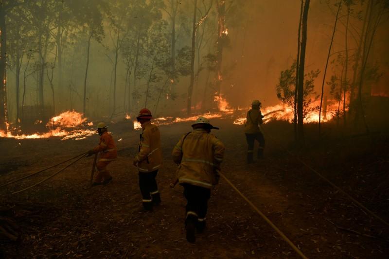 超過1800消防員持續和澳洲大火作戰,卻有義消遭指控故意縱火。(路透社)