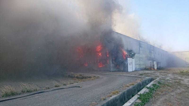 風大加易燃物助燃,廠區陷入火海。(圖民眾提供)