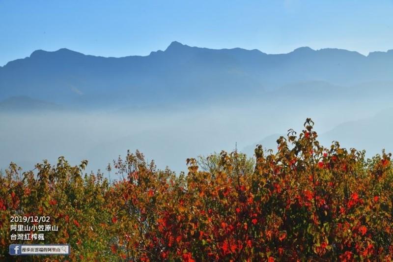 小笠原山的美麗山景與楓紅相映成趣。(黃源明提供)