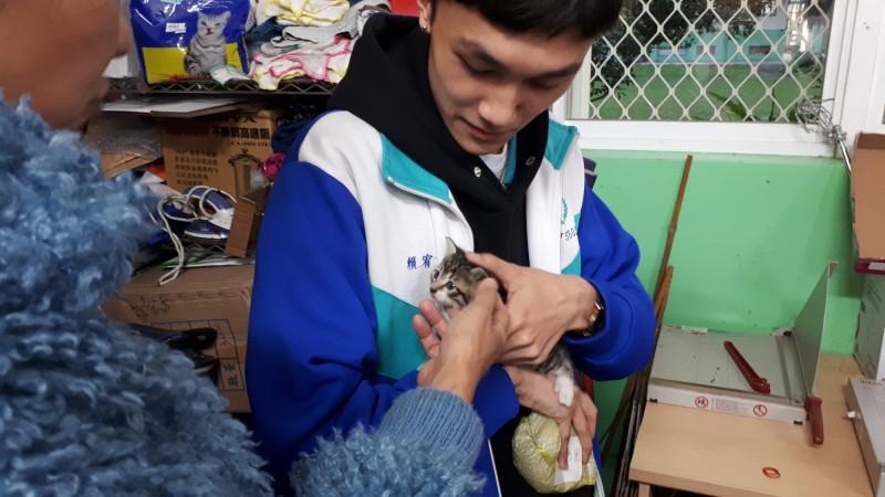 國立羅東高商校貓「咪將」,原本是一隻被遺棄的流浪小貓,有天在校園內被學生發現,向學校反映後將牠梳洗、照顧,大家幫牠取名為「咪將」,成為學生們最愛的「校貓」。(教育部提供)