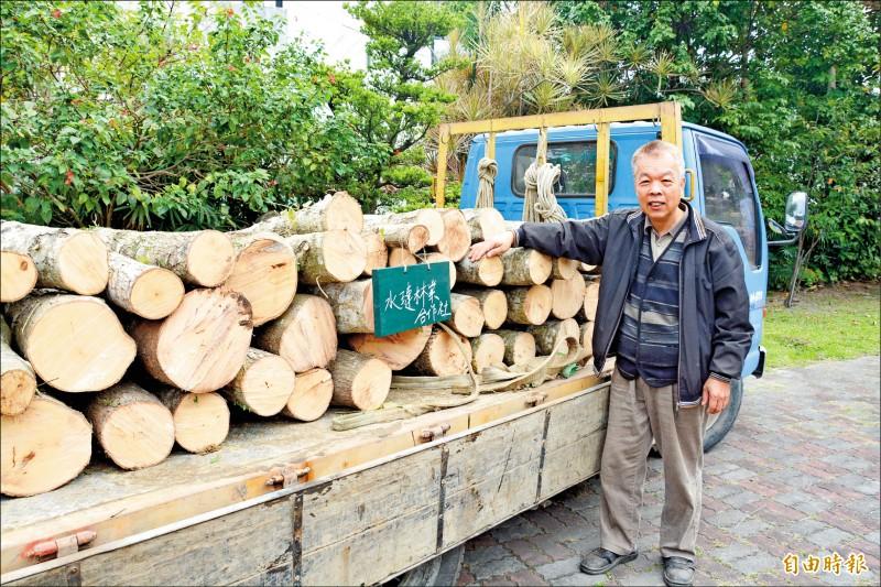 花蓮水璉林業運銷合作社理事主席吳茂坤,將林地作為段木香菇培植地,自種、自售發展林下經濟, 透過花蓮林管處媒合,以培植出廿公噸。(記者王峻祺攝)